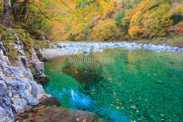 阿寺渓谷と紅葉の写真素材 [FYI01558428]