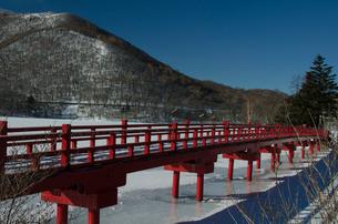 雪の中の赤城神社の参道の写真素材 [FYI01558437]