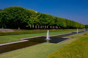 昭和記念公園の噴水の写真素材 [FYI01558572]
