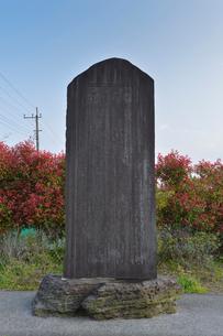 血脇守之助謝恩の碑(東京歯科大学設立など多大な功績)の写真素材 [FYI01558784]