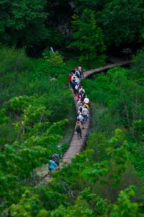 プリトヴィツェ湖群国立公園と観光客の写真素材 [FYI01558789]
