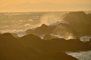 野島崎灯台付近の海岸の波しぶきの写真素材 [FYI01558844]