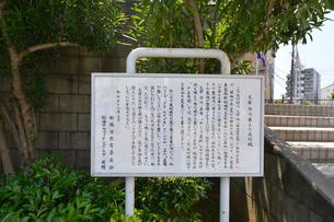 太宰治が植えた夾竹桃の説明板の写真素材 [FYI01558852]