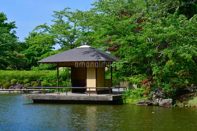 柏の葉公園の日本庭園のアズマヤの写真素材 [FYI01559094]