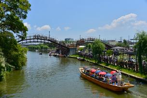 潮来あやめ祭り会場の観光船の写真素材 [FYI01559320]