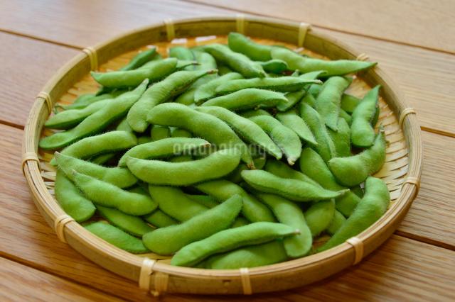 笊に盛られた枝豆の写真素材 [FYI01559433]