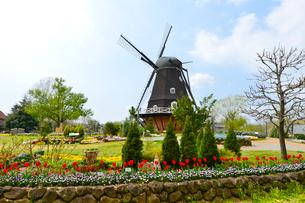 アンデルセン公園 デンマーク職人が手掛けた風車の写真素材 [FYI01559464]