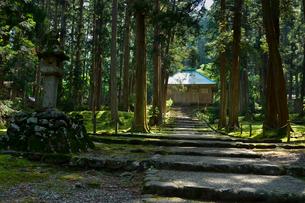 北陸の苔寺と呼ばれる平泉寺白山神社の写真素材 [FYI01559612]