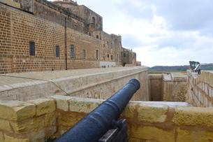 チタデル大城塞にある大砲の写真素材 [FYI01559661]
