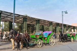 マラケシュ市街の観光馬車の写真素材 [FYI01559841]