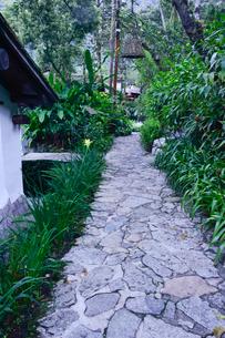 ホテル,インカテラ・マチュピチュの庭の写真素材 [FYI01560075]