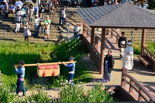 潮来あやめ祭り嫁入り舟の写真素材 [FYI01560143]