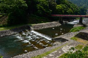 箱根湯元駅前を流れる早川と赤いアジサイ橋の写真素材 [FYI01560167]