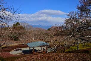 岩本山公園にある東屋と山並みの写真素材 [FYI01560229]