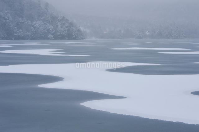 日光湯の湖の雪景色の写真素材 [FYI01560264]