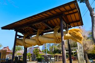 赤城山神社の大しめ縄の写真素材 [FYI01560435]