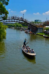 潮来あやめ祭り会場のろ舟の写真素材 [FYI01560700]