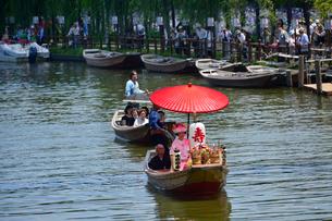 潮来あやめ祭り会場のろ舟と嫁入り舟の写真素材 [FYI01560940]