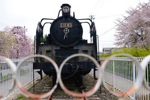 シダレ桜散歩道に展示してある機関車の写真素材 [FYI01561076]