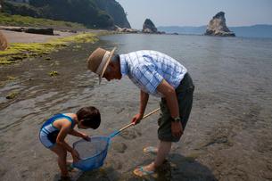 富浦海岸の磯遊びの写真素材 [FYI01561589]