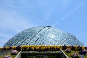 とっとり花回廊,フラワド-ムの写真素材 [FYI01561989]