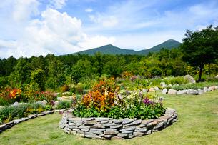 色々な花が咲く「富士見高原リゾート」の展望ロックガーデンの写真素材 [FYI01562092]