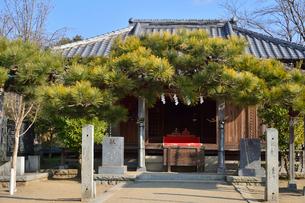 お寺に飾られたお雛様の写真素材 [FYI01562395]