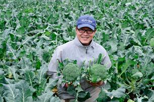 収穫したブロッコリーを持つ農夫の写真素材 [FYI01562708]