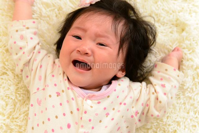 泣き顔の赤ちゃんの写真素材 [FYI01562766]
