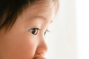 赤ちゃんの瞳の写真素材 [FYI01562773]