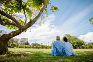 公園の芝生に座るシニア夫婦の後ろ姿の写真素材 [FYI01562785]