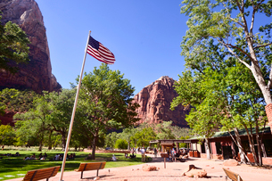 ザイオン国立公園の木々と岩山とアメリカ国旗のある景観の写真素材 [FYI01562936]