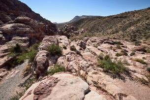 地層と色々な色の岩山が並ぶレットロックキャニオン国立保護区の写真素材 [FYI01563154]