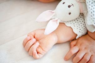 子供の手とぬいぐるみの写真素材 [FYI01563156]