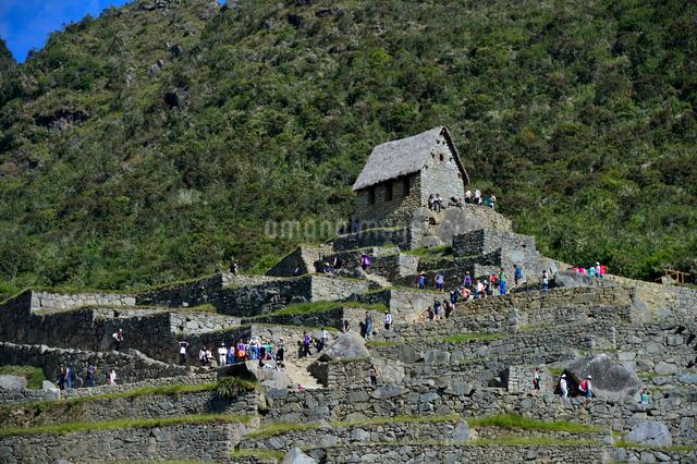 マチュピチュ遺跡のアンデネス(段々畑)と見張り小屋跡の写真素材 [FYI01563310]