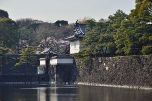皇居のお堀と石垣の写真素材 [FYI01563395]