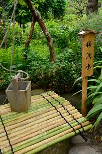 向島百花園にある「梅洞水」の桶の写真素材 [FYI01563699]