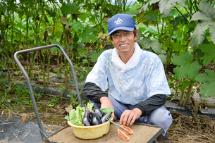 笊にある収穫したナスとオクラと農夫の写真素材 [FYI01563704]