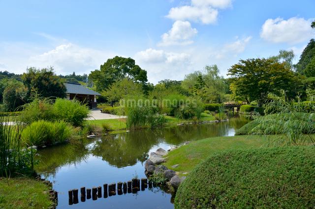 偕楽園の日本庭園の写真素材 [FYI01563722]