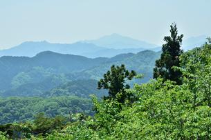 高尾山から見た山並みの写真素材 [FYI01563761]