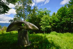 富士見高原創造の森彫刻公園の作品の写真素材 [FYI01563854]