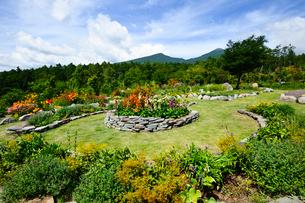 色々な花が咲く「富士見高原リゾート」の展望ロックガーデンの写真素材 [FYI01564020]