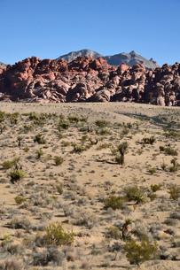 地層と色々な色の岩山が並ぶ景観の写真素材 [FYI01564089]