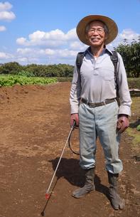 畑の消毒をするの写真素材 [FYI01564123]