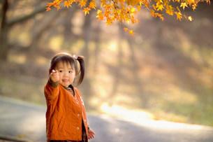 子供の写真素材 [FYI01564558]