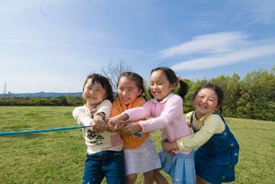 綱引きをする子供達の写真素材 [FYI01564569]