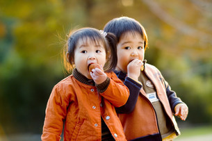子供の写真素材 [FYI01564590]
