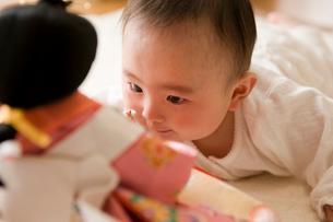 雛人形を見る赤ちゃんの写真素材 [FYI01564794]