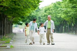 並木道を歩く祖父母と双子の孫の写真素材 [FYI01564870]