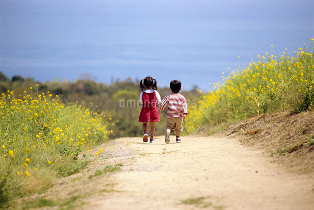 子供の写真素材 [FYI01564940]